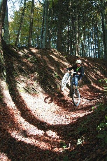 Herbst, Wald, shredden mit m dirtbike :)