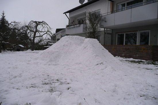 Schneedirt, der 1ste