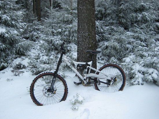 Perp im Schnee