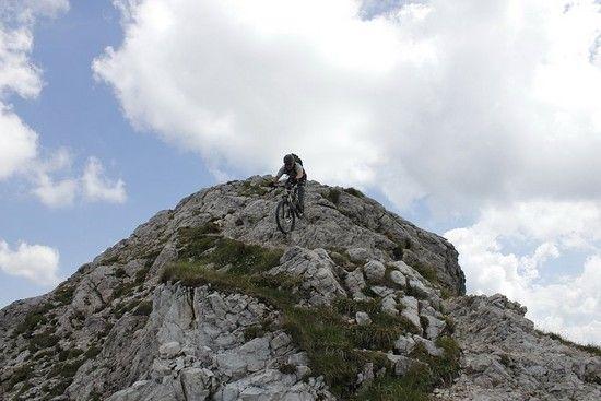 Alpinartist