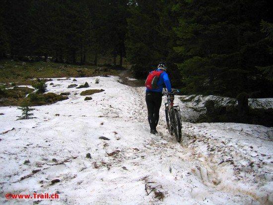 Mythen Trail zwischen Holzegg und Haggenegg c 2008 www.Trail.ch