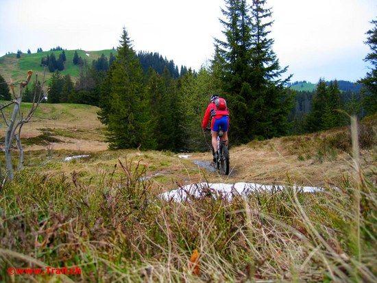 Nätschboden bei der Haggenegg Richtung Hochstuckli c 2008 www.Trail.ch