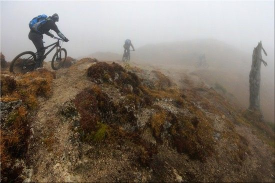 2.Advent Fog-NoSnow