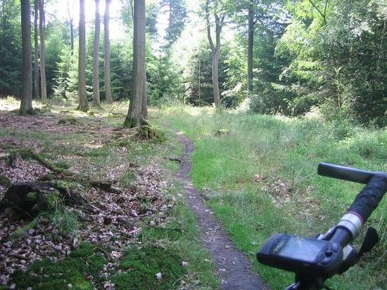 Eselsweg-Trail