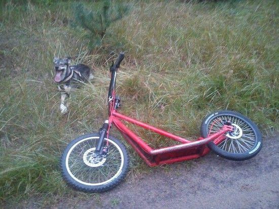 Downhillroller