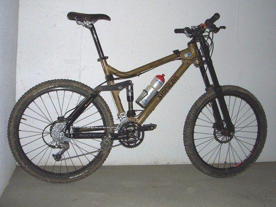 DSCI4098