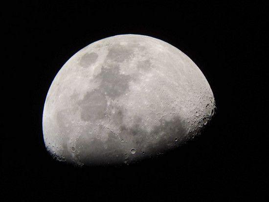 Mond1310
