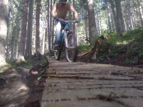 BikeparkWagrain013