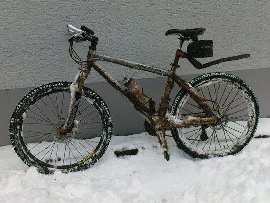 scott im schnee