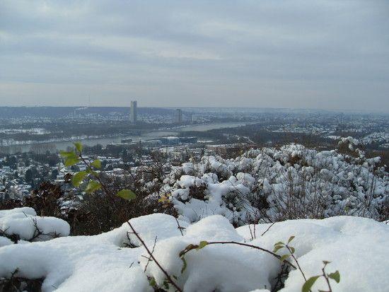 Stadt am Rhein