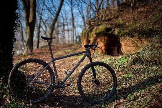 Maxis Titan 29er