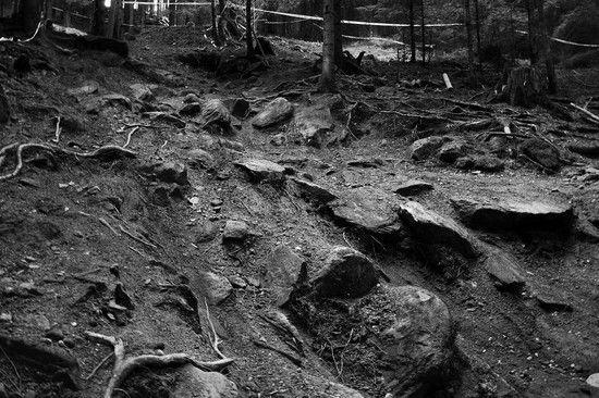 Bad Wildbad Downhill