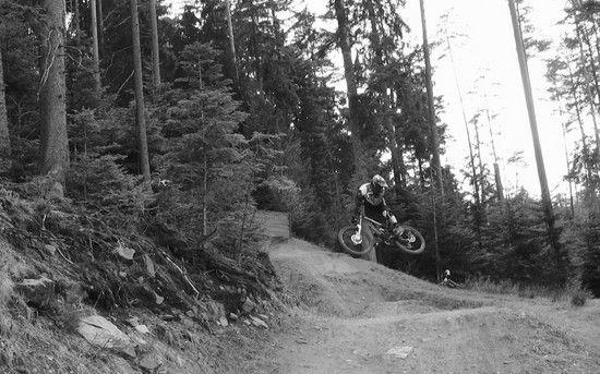 Moto-Whip