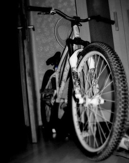Ns Bikes Bitch (gefahren 2009-10)