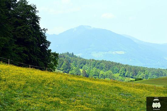 DSC 1267 Chiemgau Panorama