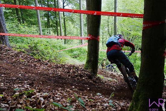 schneller Switchback Fabian Scholz Stage 3