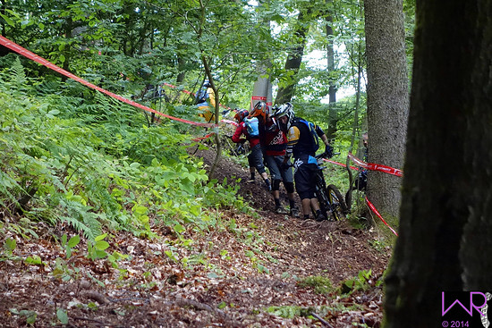 Liniencheck Stage 3 SSES #4 Willingen