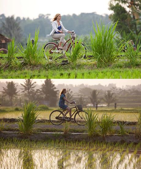 Julia Roberts EPL bicycle