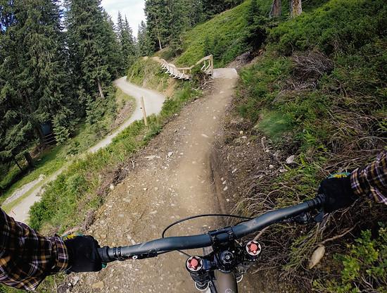 Hacklberg Trail 5