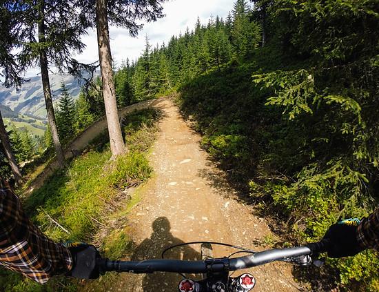 Hacklberg Trail 7