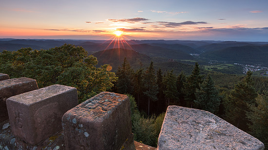 Blick vom Rehbergturm über den Pfälzer Wald