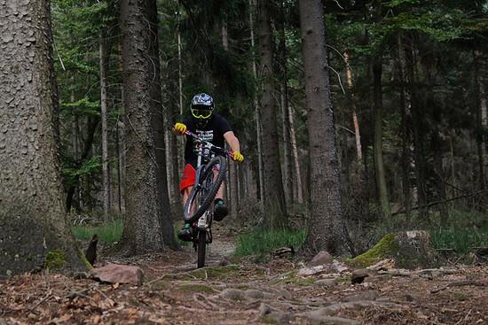 shred da trail