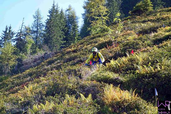 Joost Wichman im Auslauf Steilstück auf Stage 3
