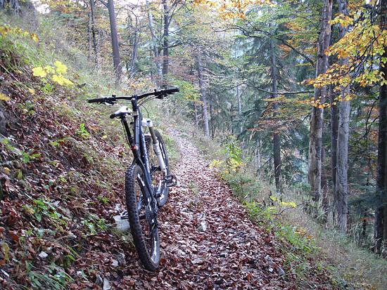Trail zur Hindenburghütte