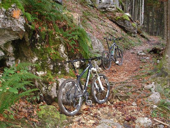 Trail zur Hinderburg-Hütte