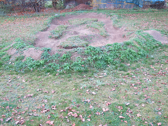 Pumptrack - drei Monate später