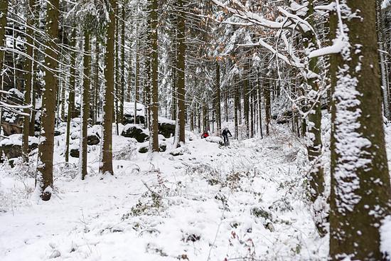 20141227-13L Schneesuche