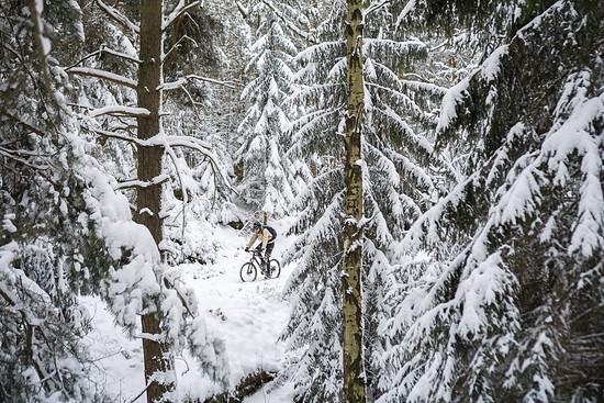 20141227-09L Schneesuche
