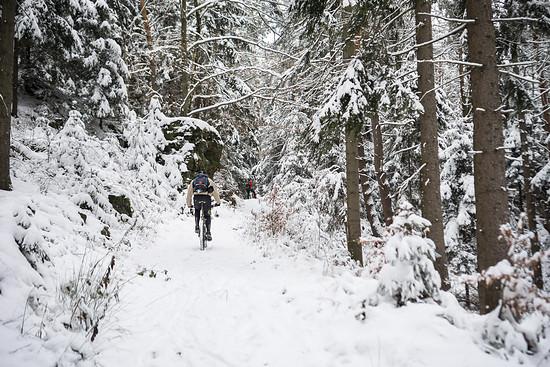20141227-08L Schneesuche