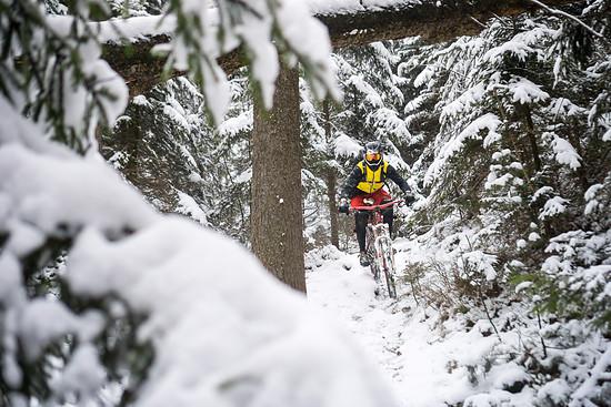 Neuschnee im Zittauer Gebirge