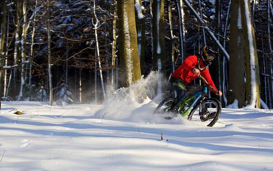 No Ski needed