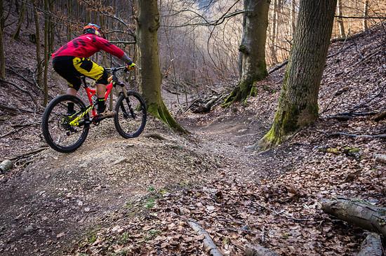 rock the bike  (11)