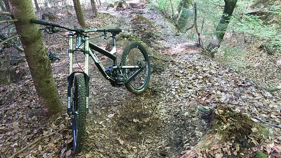 Polygon Collosus DH 2.0