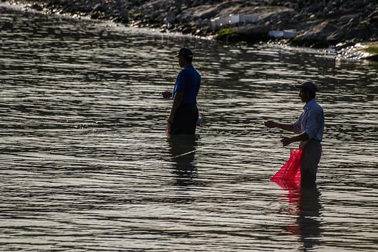 An der Küste des schwarzen Meeres scheint es nur zwei Berufe zu geben: Teebauer und Fischer