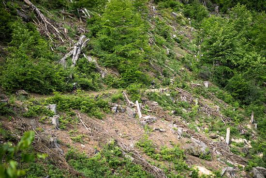 20150531-19L Schneebergtour
