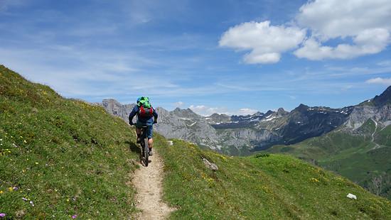 Traum Trail