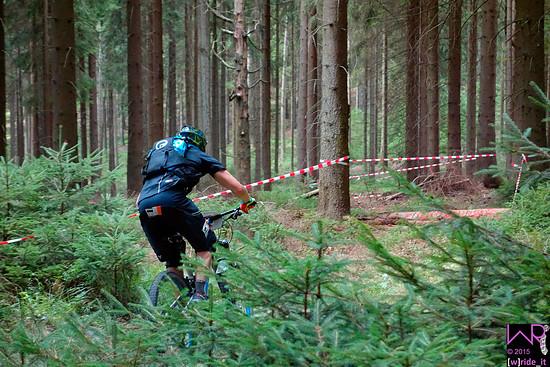 Flowiger Wald am Steinbruch von Schöneck