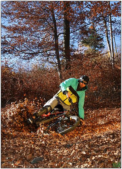November Shredding