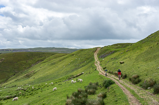 20150621-08L Brecon Beacons