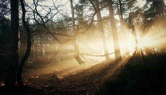 Mystical Beams @ Eckkopf Deidesheim