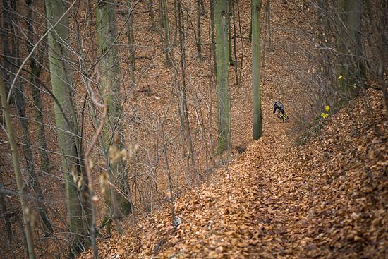 Papierfabrik Trail