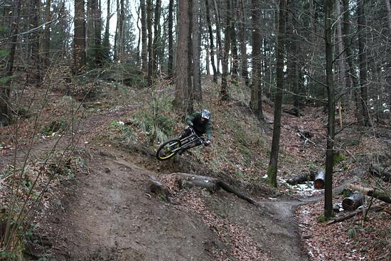 Linus eskaliert am Kybfelsen Trail in Freiburg