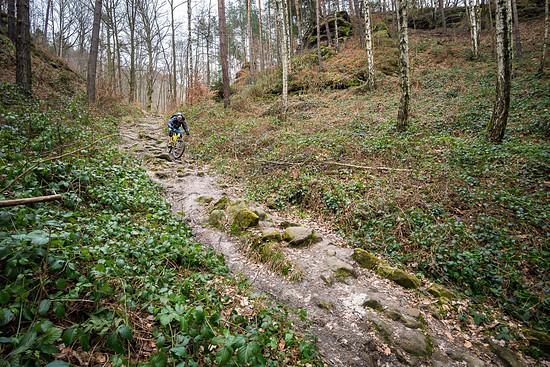 20160228-43L Sächsische Schweiz