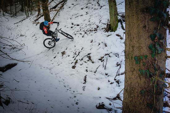 3x pinkler im letzten schnee des jahres 1