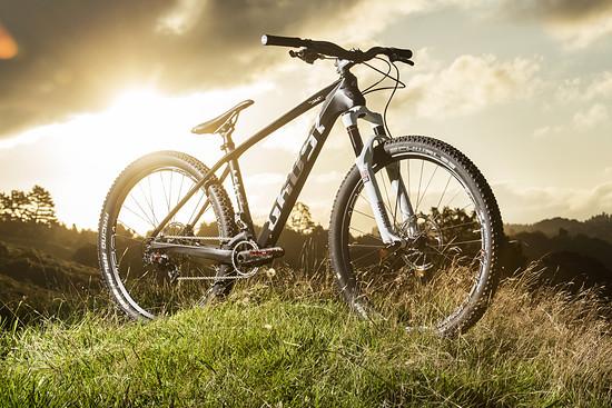 Der Exot unter den Dual-Bikes