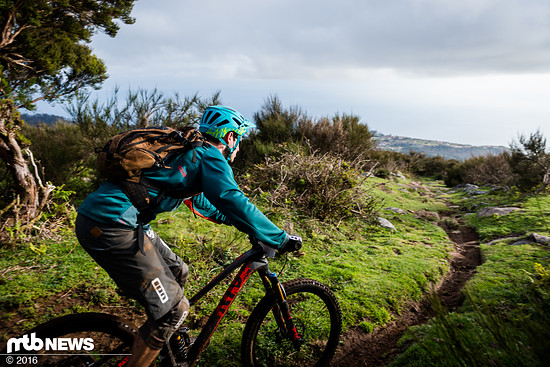 Trotz Stahlfederdämpfer pedaliert sich das Bike auch sehr gut